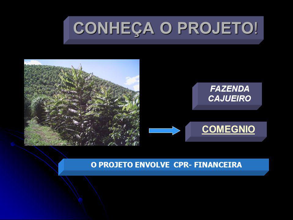 VENDAS E O GRUPO As árvores serão adquiridas no mercado brasileiro e australiano.