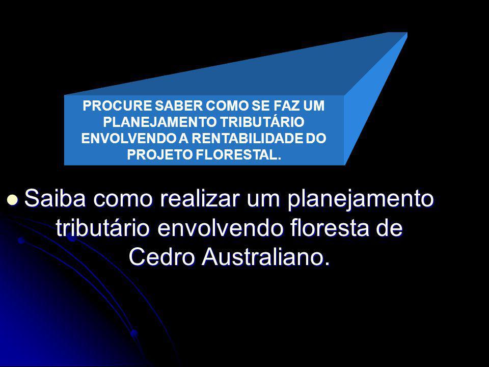 UM PROJETO FLORESTAL ENVOLVENDO GRUPO DE EMPRESAS EM FORMAÇÃO DE SOCIEDADE DE PROPÓSITO ESPECÍFICO.