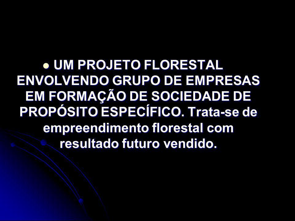 UM PROJETO FLORESTAL ENVOLVENDO GRUPO DE EMPRESAS EM FORMAÇÃO DE SOCIEDADE DE PROPÓSITO ESPECÍFICO. Trata-se de empreendimento florestal com resultado