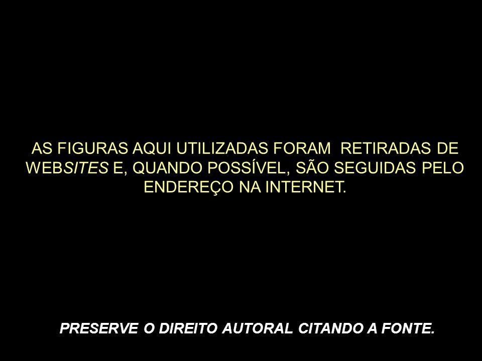 CFS7101 - Odontologia – 2ª fase Profa.Dra. Cristina Maria Henrique Pinto Profa.
