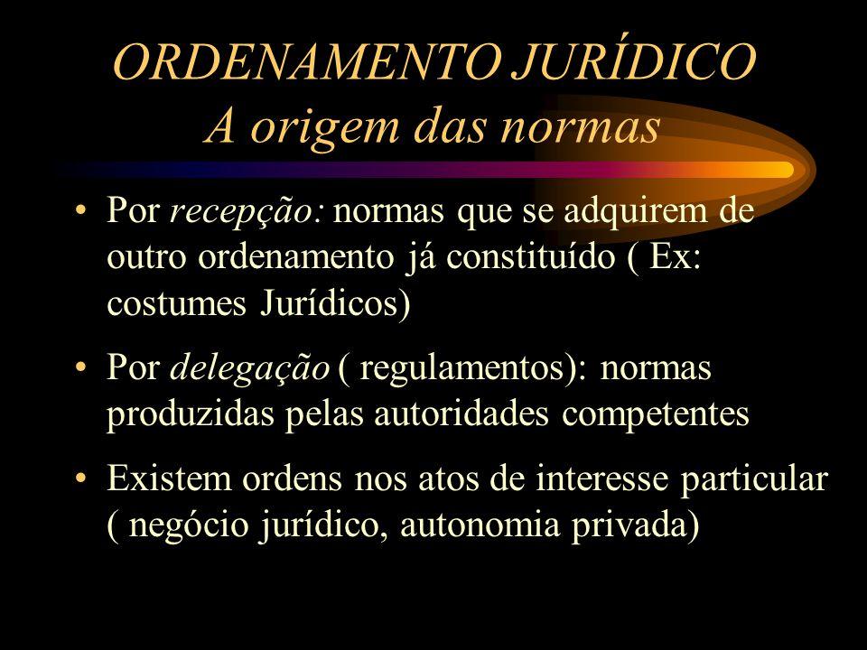 ORDENAMENTO JURÍDICO A origem das normas Por recepção: normas que se adquirem de outro ordenamento já constituído ( Ex: costumes Jurídicos) Por delega