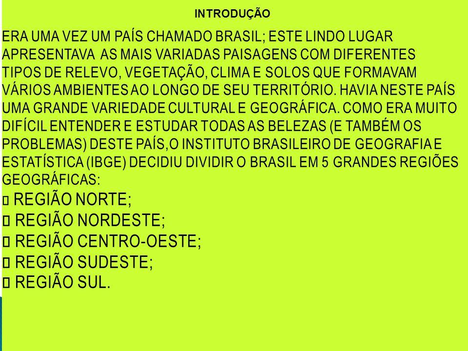 INTRODUÇÃO ERA UMA VEZ UM PAÍS CHAMADO BRASIL; ESTE LINDO LUGAR APRESENTAVA AS MAIS VARIADAS PAISAGENS COM DIFERENTES TIPOS DE RELEVO, VEGETAÇÃO, CLIM