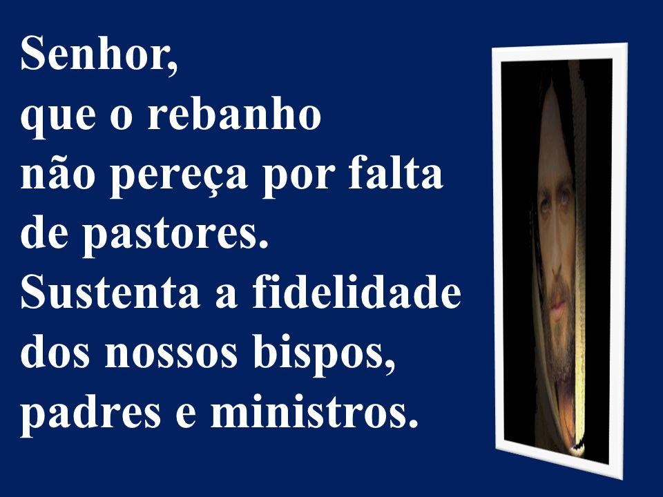 Senhor, que o rebanho não pereça por falta de pastores. Sustenta a fidelidade dos nossos bispos, padres e ministros.