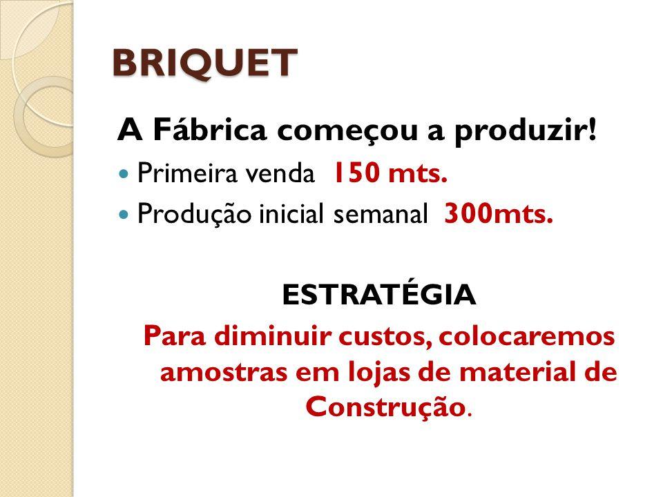 BRIQUET A Fábrica começou a produzir! Primeira venda 150 mts. Produção inicial semanal 300mts. ESTRATÉGIA Para diminuir custos, colocaremos amostras e
