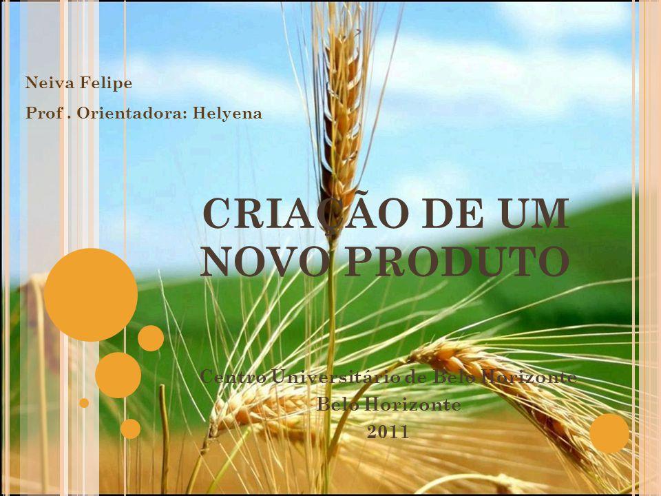 CRIAÇÃO DE UM NOVO PRODUTO Centro Universitário de Belo Horizonte Belo Horizonte 2011 Neiva Felipe Prof. Orientadora: Helyena