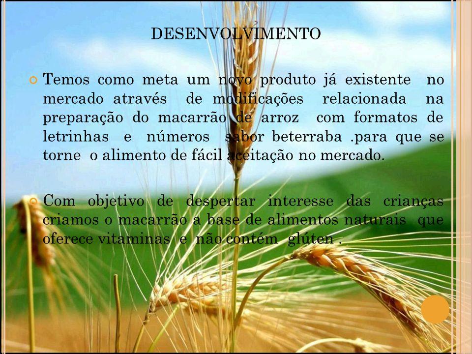 DESENVOLVIMENTO Temos como meta um novo produto já existente no mercado através de modificações relacionada na preparação do macarrão de arroz com for