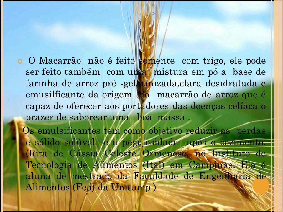 O Macarrão não é feito somente com trigo, ele pode ser feito também com uma mistura em pó a base de farinha de arroz pré -gelatinizada,clara desidrata