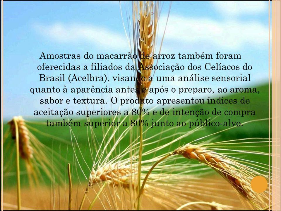 Amostras do macarrão de arroz também foram oferecidas a filiados da Associação dos Celíacos do Brasil (Acelbra), visando a uma análise sensorial quant
