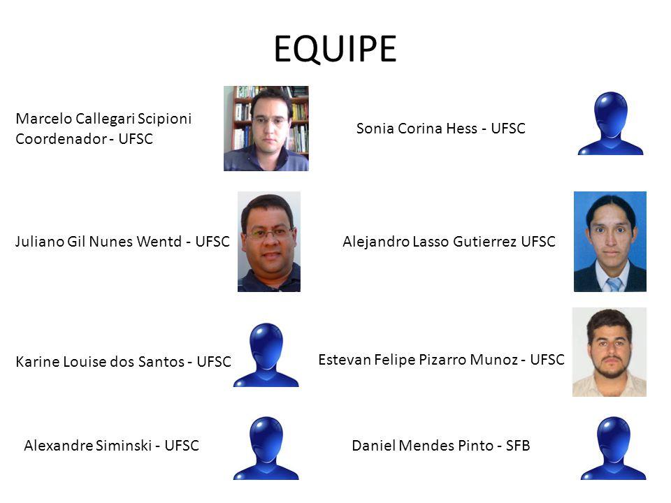 EQUIPE Sonia Corina Hess - UFSC Alejandro Lasso Gutierrez UFSCJuliano Gil Nunes Wentd - UFSC Karine Louise dos Santos - UFSC Alexandre Siminski - UFSC