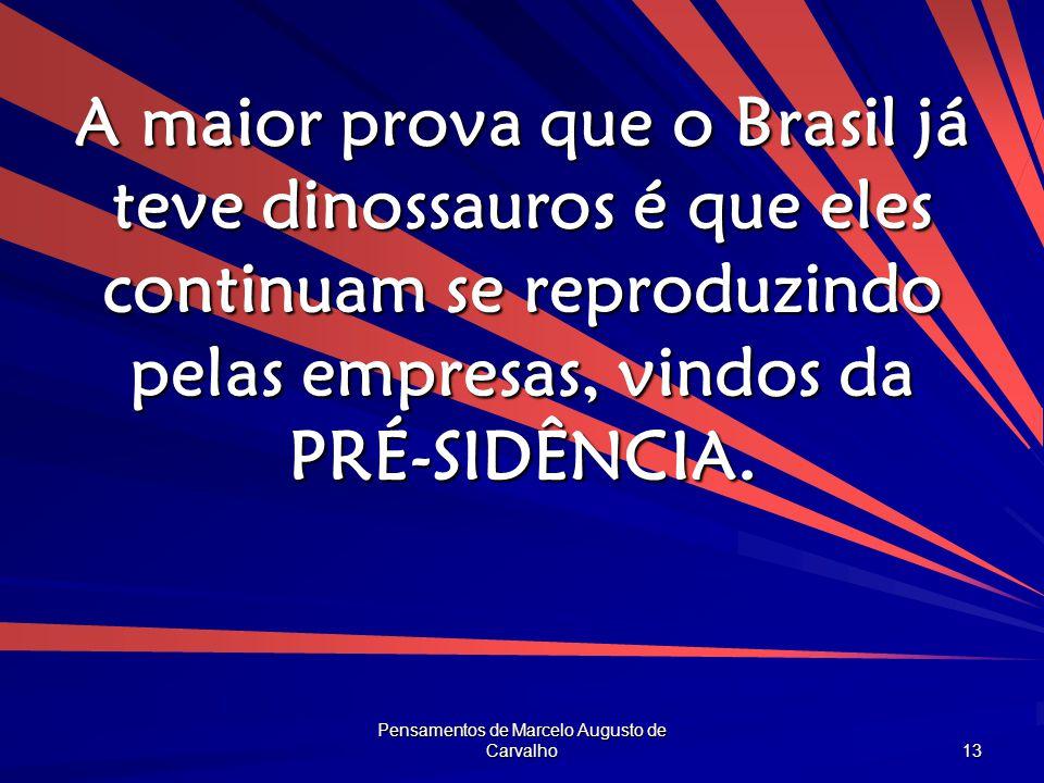 Pensamentos de Marcelo Augusto de Carvalho 13 A maior prova que o Brasil já teve dinossauros é que eles continuam se reproduzindo pelas empresas, vind
