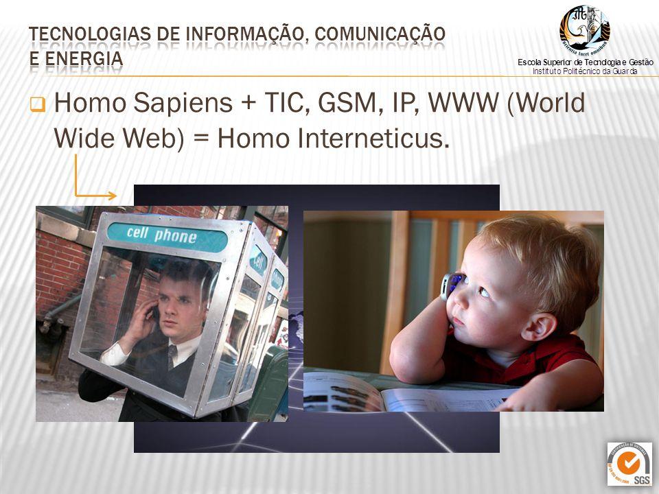  Homo Sapiens + TIC, GSM, IP, WWW (World Wide Web) = Homo Interneticus.