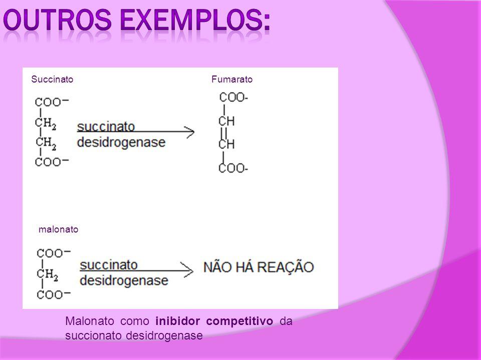 Malonato como inibidor competitivo da succionato desidrogenase malonato SuccinatoFumarato