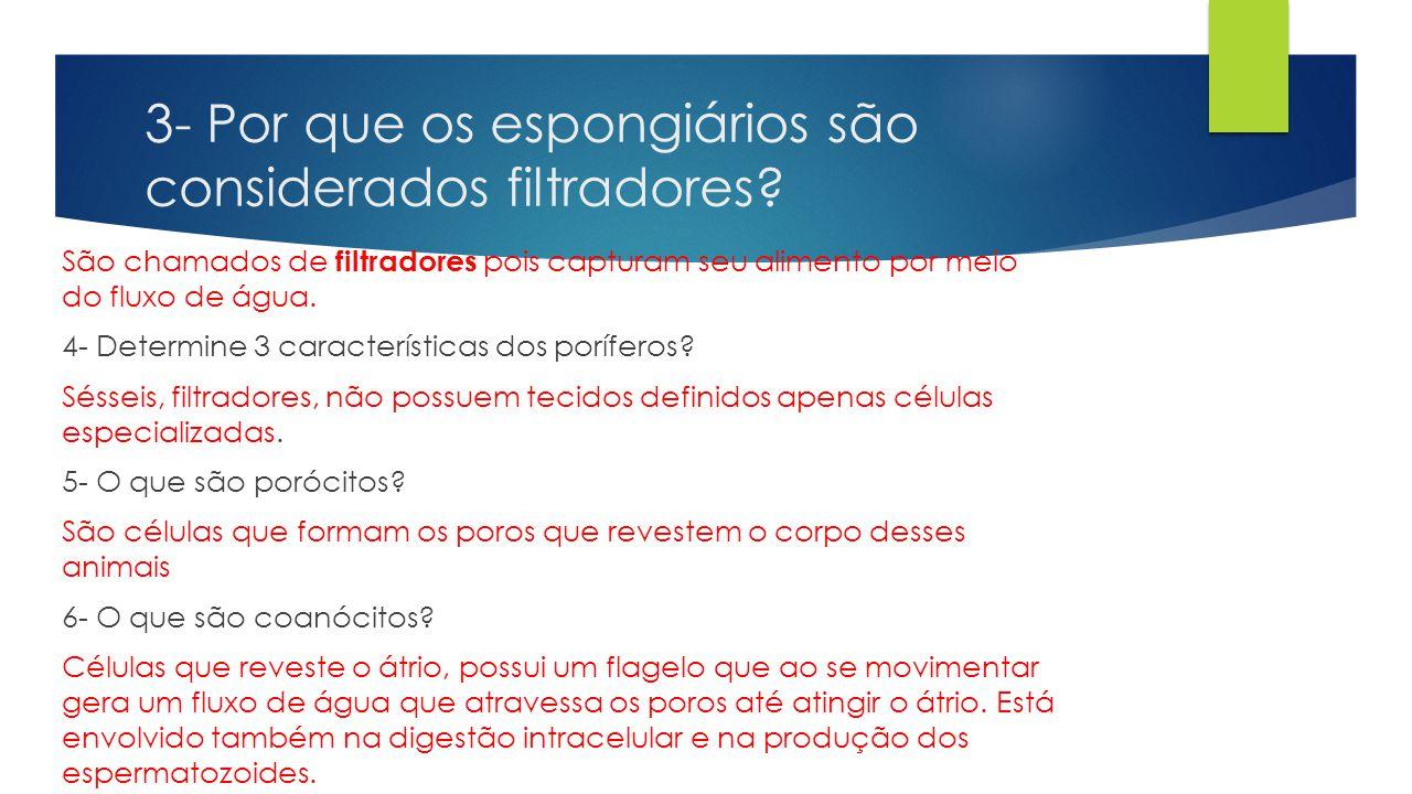 3- Por que os espongiários são considerados filtradores? São chamados de filtradores pois capturam seu alimento por meio do fluxo de água. 4- Determin
