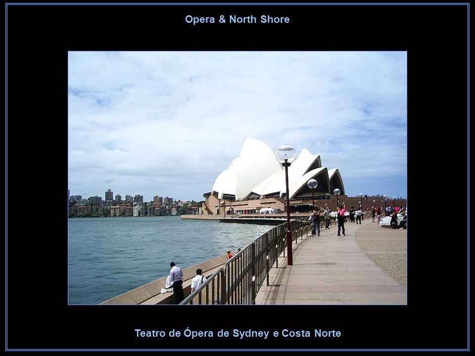 Sydney Opera House Teatro de Ópera de Sydney