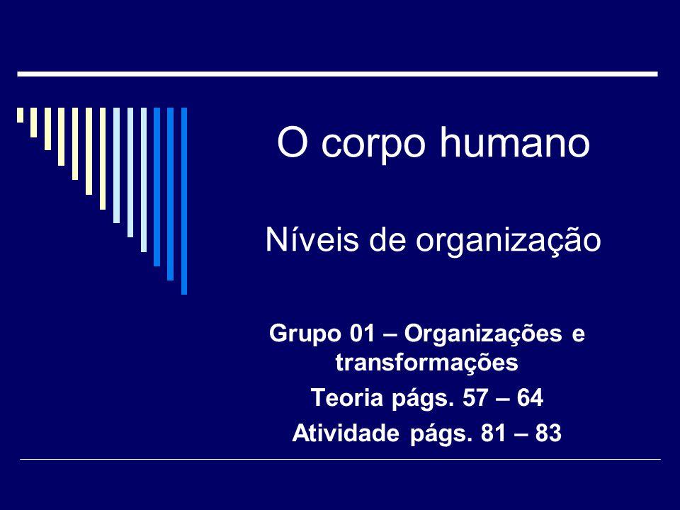 O corpo humano Níveis de organização Grupo 01 – Organizações e transformações Teoria págs. 57 – 64 Atividade págs. 81 – 83