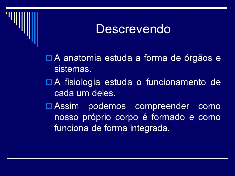 Descrevendo  A anatomia estuda a forma de órgãos e sistemas.  A fisiologia estuda o funcionamento de cada um deles.  Assim podemos compreender como