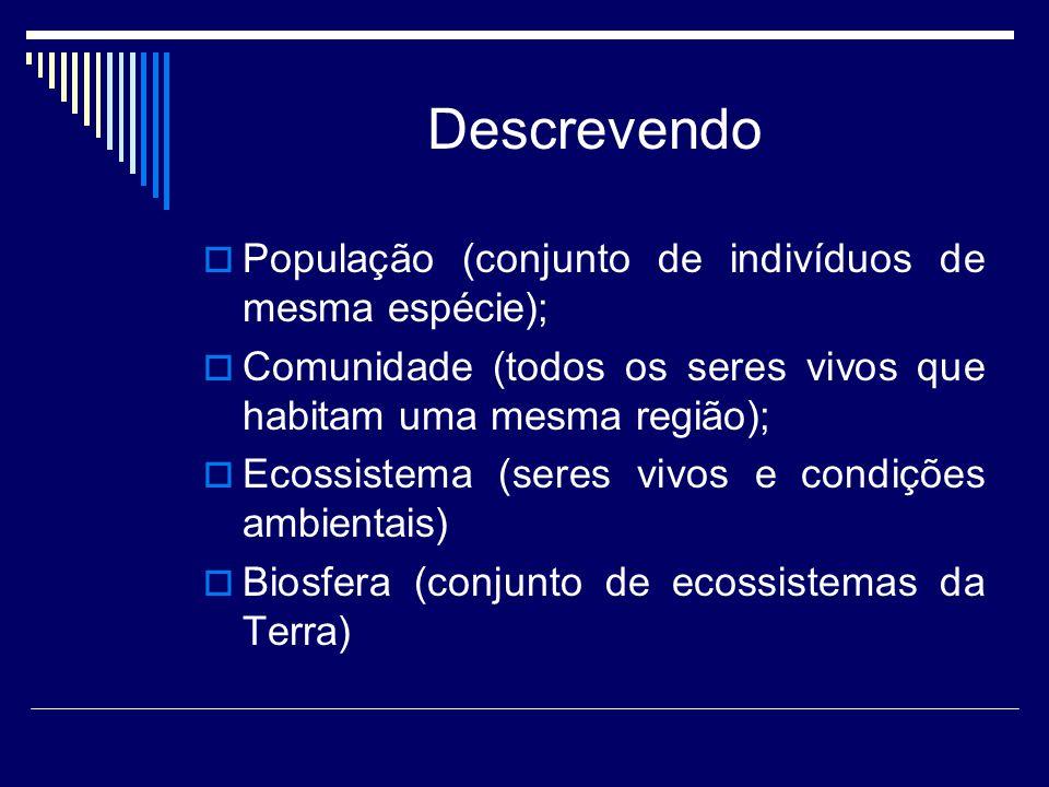 Descrevendo  População (conjunto de indivíduos de mesma espécie);  Comunidade (todos os seres vivos que habitam uma mesma região);  Ecossistema (seres vivos e condições ambientais)  Biosfera (conjunto de ecossistemas da Terra)