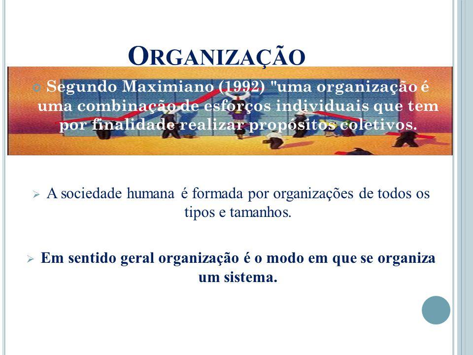 O RGANIZAÇÃO Segundo Maximiano (1992) uma organização é uma combinação de esforços individuais que tem por finalidade realizar propósitos coletivos.