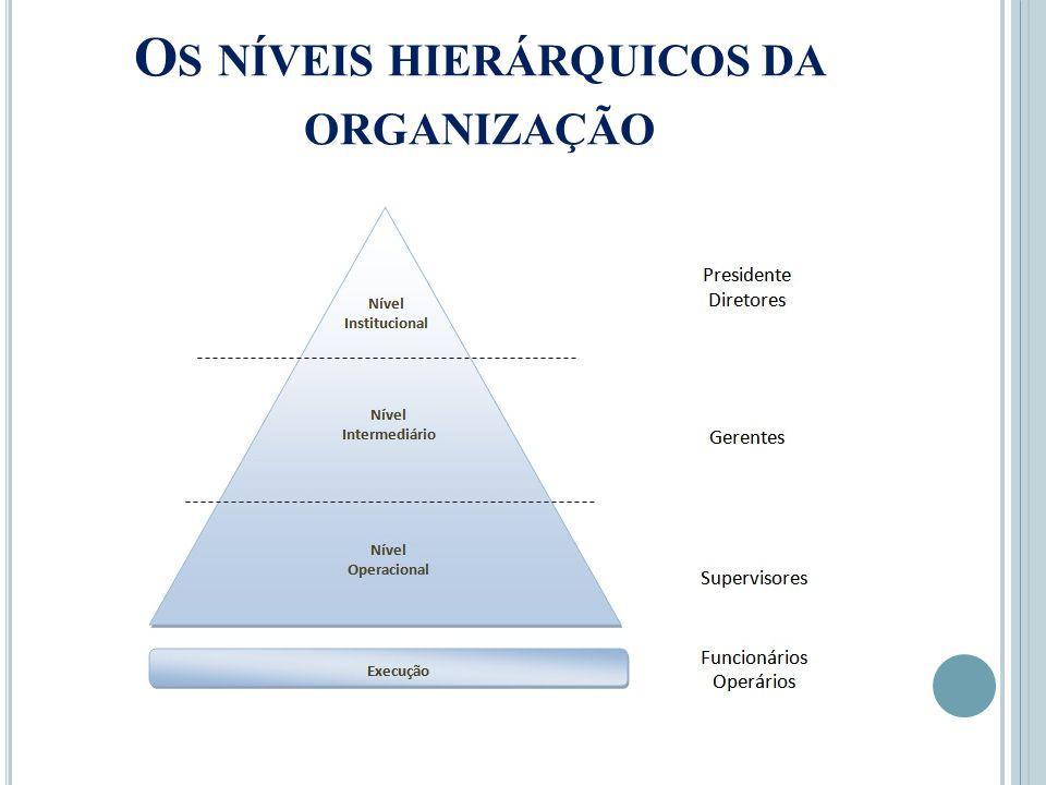 O S NÍVEIS HIERÁRQUICOS DA ORGANIZAÇÃO