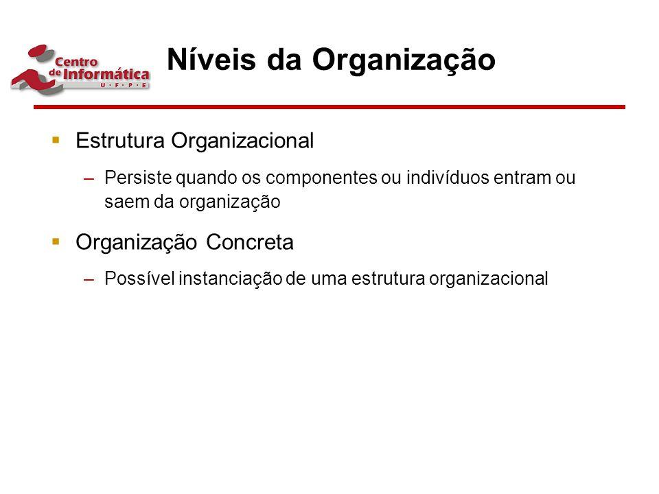 Níveis da Organização  Estrutura Organizacional –Persiste quando os componentes ou indivíduos entram ou saem da organização  Organização Concreta –P