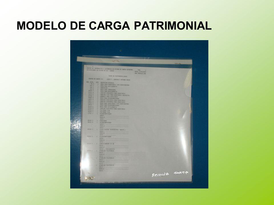 MODELO DE CARGA PATRIMONIAL