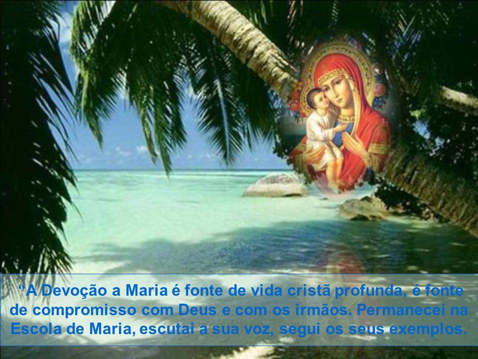 A Devoção a Maria é fonte de vida cristã profunda, é fonte de compromisso com Deus e com os irmãos.