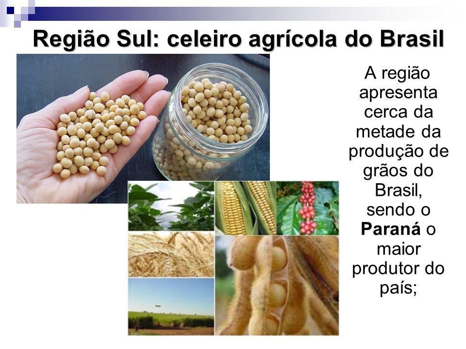 Região Sul: celeiro agrícola do Brasil A região apresenta cerca da metade da produção de grãos do Brasil, sendo o Paraná o maior produtor do país;