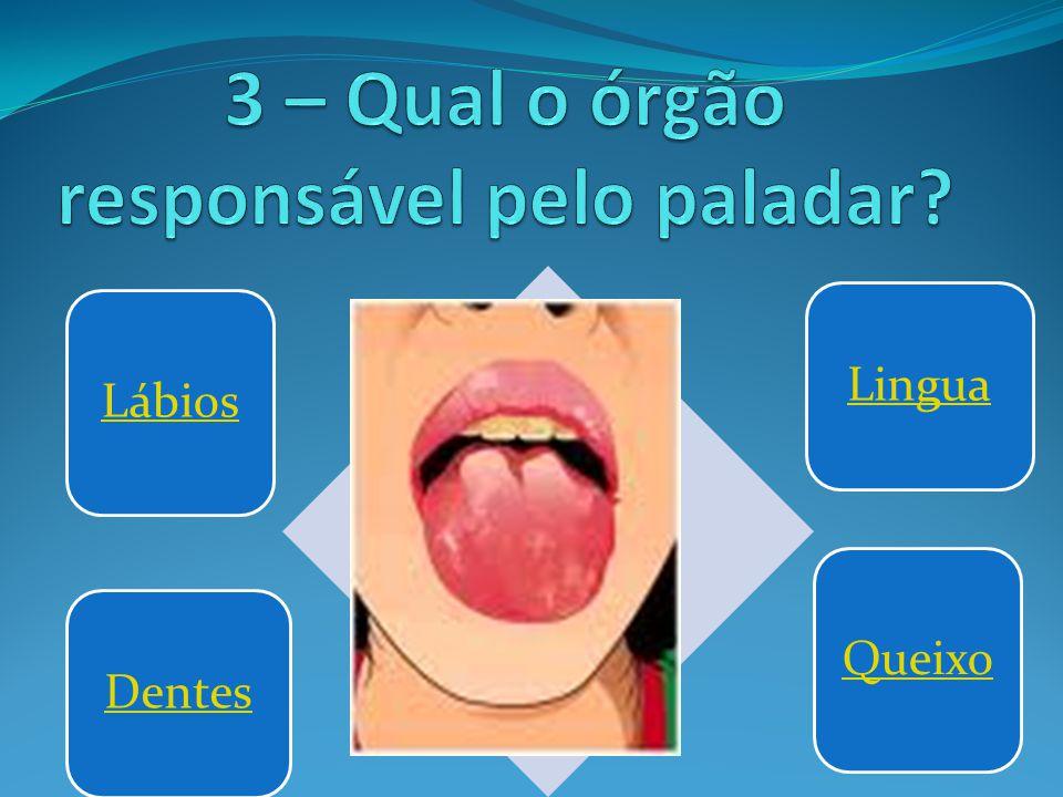 Lábios LinguaDentes Queixo