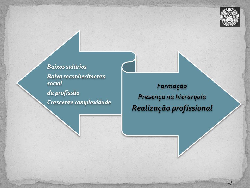 13 Baixos salários Baixo reconhecimento social da profissão Crescente complexidade Formação Presença na hierarquia Realização profissional