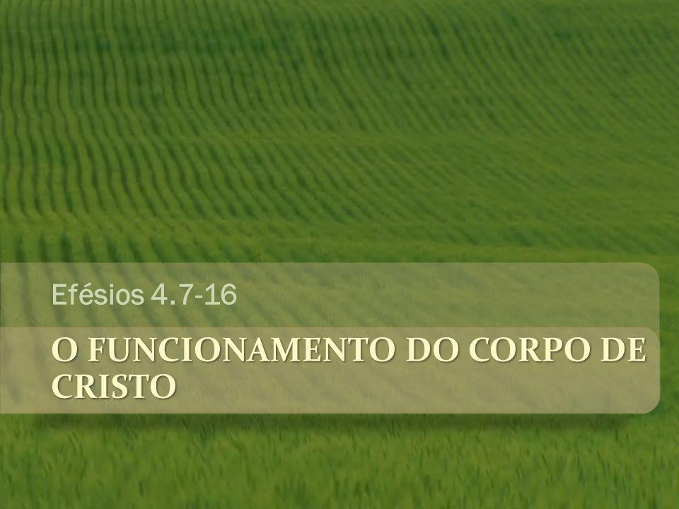 O FUNCIONAMENTO DO CORPO DE CRISTO Efésios 4.7-16