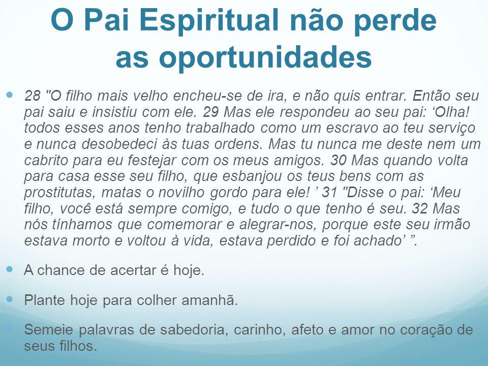 O Pai Espiritual não perde as oportunidades 28 O filho mais velho encheu-se de ira, e não quis entrar.