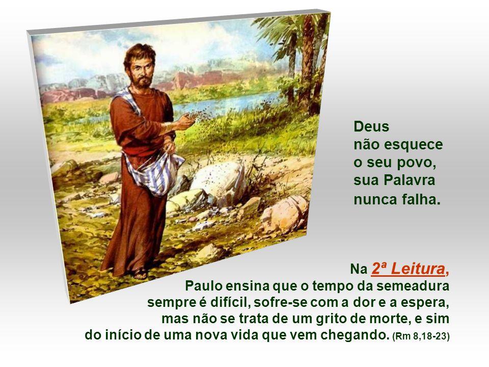 Na 1ª Leitura, o Profeta compara a Palavra de Deus à CHUVA.