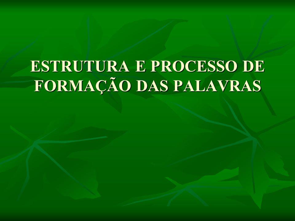 ESTRUTURA E PROCESSO DE FORMAÇÃO DAS PALAVRAS ESTRUTURA E PROCESSO DE FORMAÇÃO DAS PALAVRAS