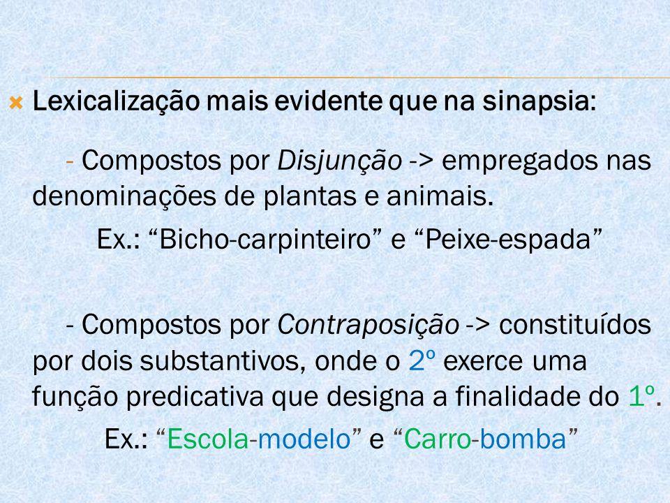  Lexicalização mais evidente que na sinapsia: - Compostos por Disjunção -> empregados nas denominações de plantas e animais.