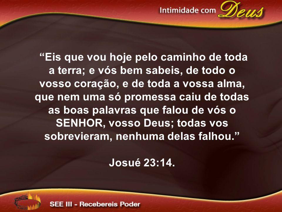 Eis que vou hoje pelo caminho de toda a terra; e vós bem sabeis, de todo o vosso coração, e de toda a vossa alma, que nem uma só promessa caiu de todas as boas palavras que falou de vós o SENHOR, vosso Deus; todas vos sobrevieram, nenhuma delas falhou. Josué 23:14.