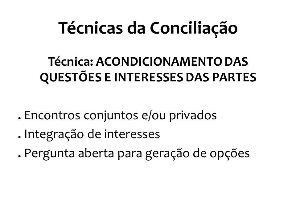 Técnicas da Conciliação Técnica: ACONDICIONAMENTO DAS QUESTÕES E INTERESSES DAS PARTES. Encontros conjuntos e/ou privados. Integração de interesses. P