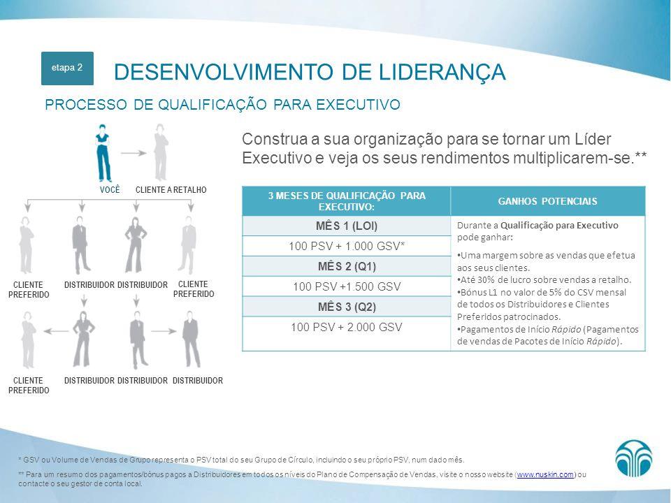 DESENVOLVIMENTO DE LIDERANÇA PROCESSO DE QUALIFICAÇÃO PARA EXECUTIVO Construa a sua organização para se tornar um Líder Executivo e veja os seus rendi
