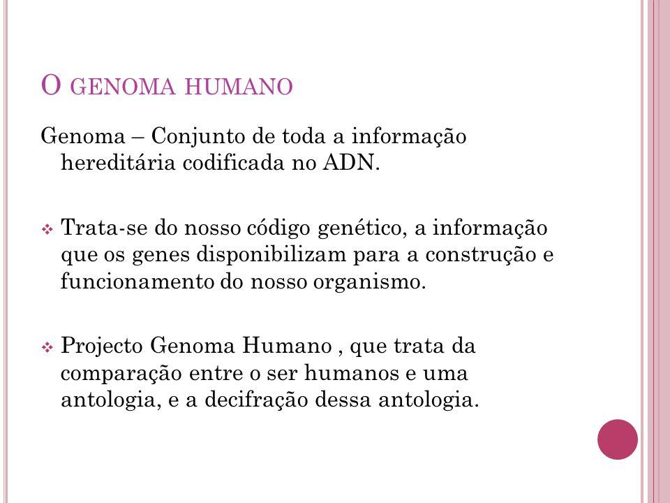 O GENOMA HUMANO Genoma – Conjunto de toda a informação hereditária codificada no ADN.  Trata-se do nosso código genético, a informação que os genes d