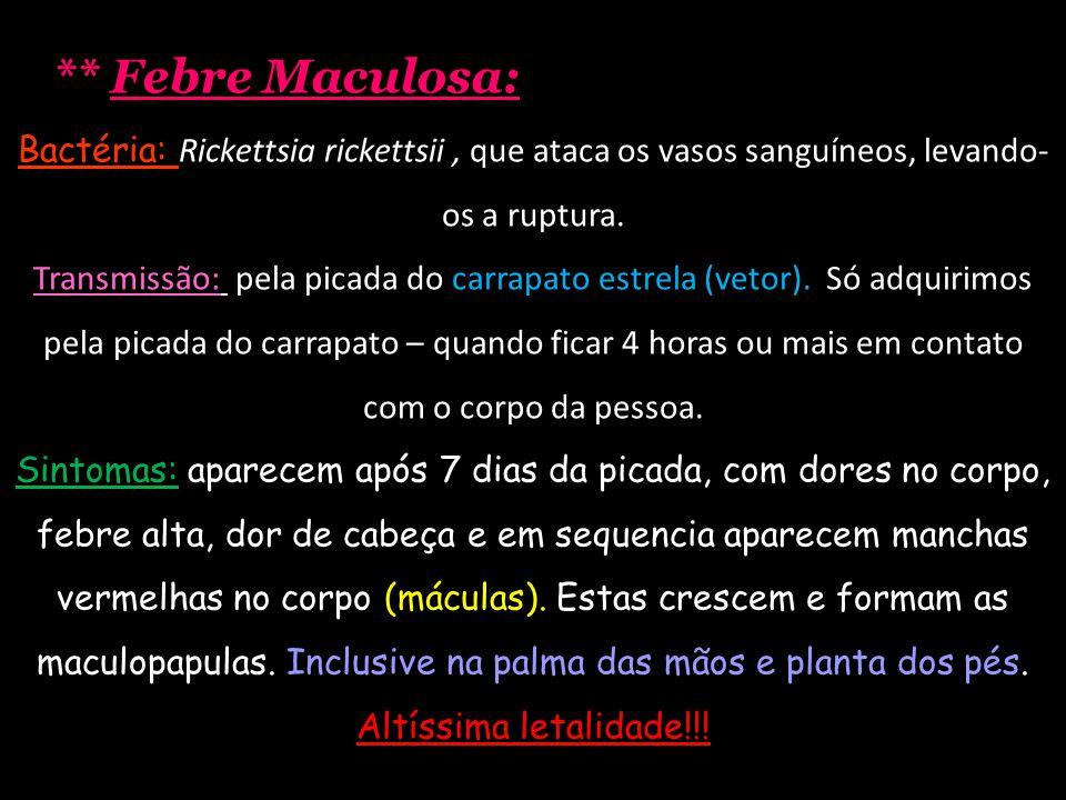 ** Febre Maculosa: Bactéria: Rickettsia rickettsii, que ataca os vasos sanguíneos, levando- os a ruptura. Transmissão: pela picada do carrapato estrel