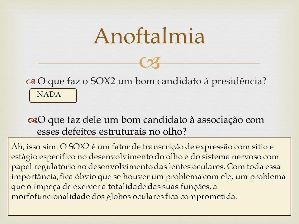   O que faz o SOX2 um bom candidato à presidência? Anoftalmia NADA  O que faz dele um bom candidato à associação com esses defeitos estruturais no