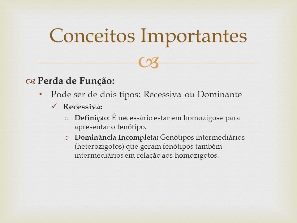   Perda de Função: Pode ser de dois tipos: Recessiva ou Dominante Recessiva: o Definição : É necessário estar em homozigose para apresentar o fenóti