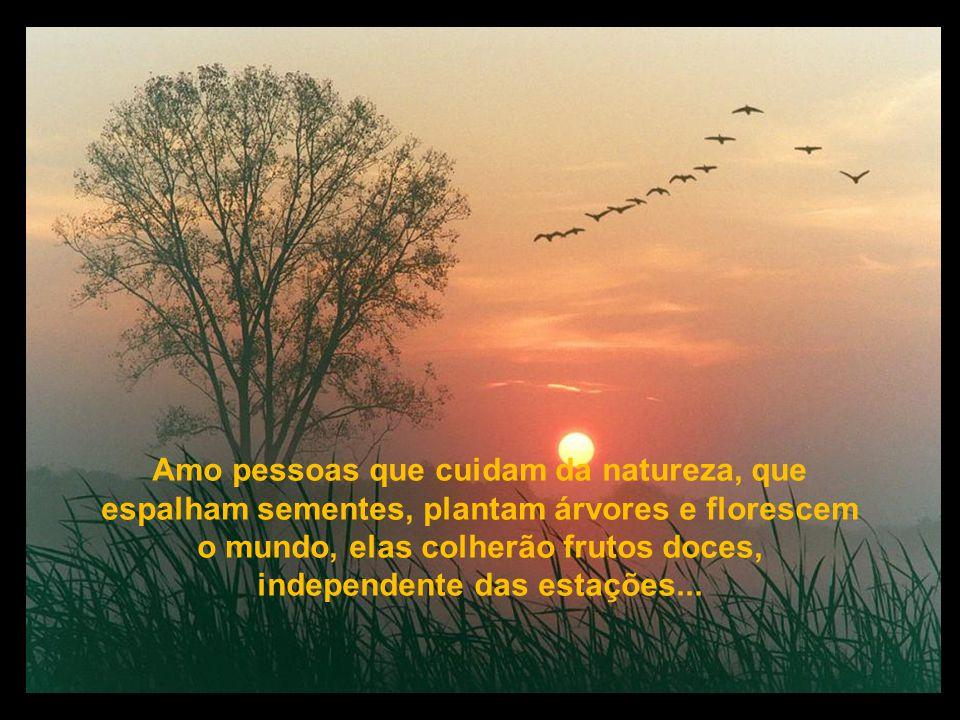 Amo pessoas que valorizam riquezas só do espírito e ignoram a miséria das almas, elas entendem que pobre é aquele coitado, que só possui bens materiai