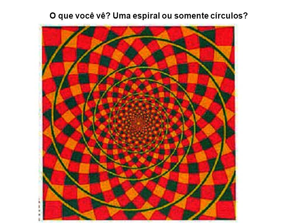 O que você vê? Uma espiral ou somente círculos?