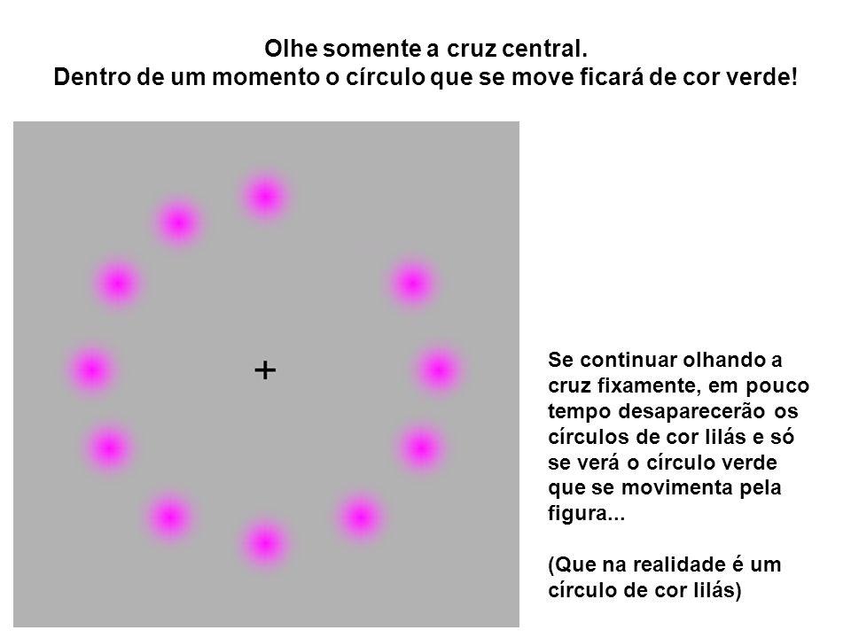 Olhe somente a cruz central. Dentro de um momento o círculo que se move ficará de cor verde! Se continuar olhando a cruz fixamente, em pouco tempo des