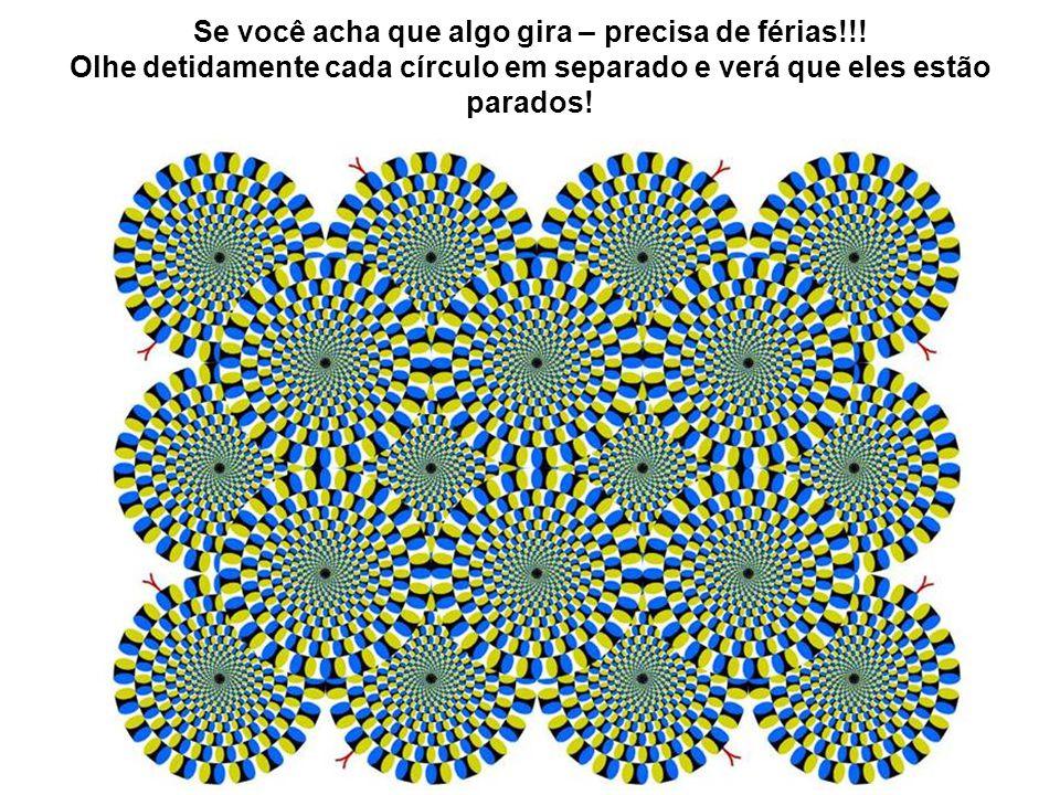 Se você acha que algo gira – precisa de férias!!! Olhe detidamente cada círculo em separado e verá que eles estão parados!