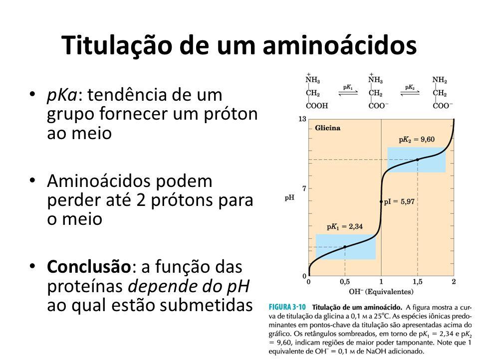 Titulação de um aminoácidos pKa: tendência de um grupo fornecer um próton ao meio Aminoácidos podem perder até 2 prótons para o meio Conclusão: a funç