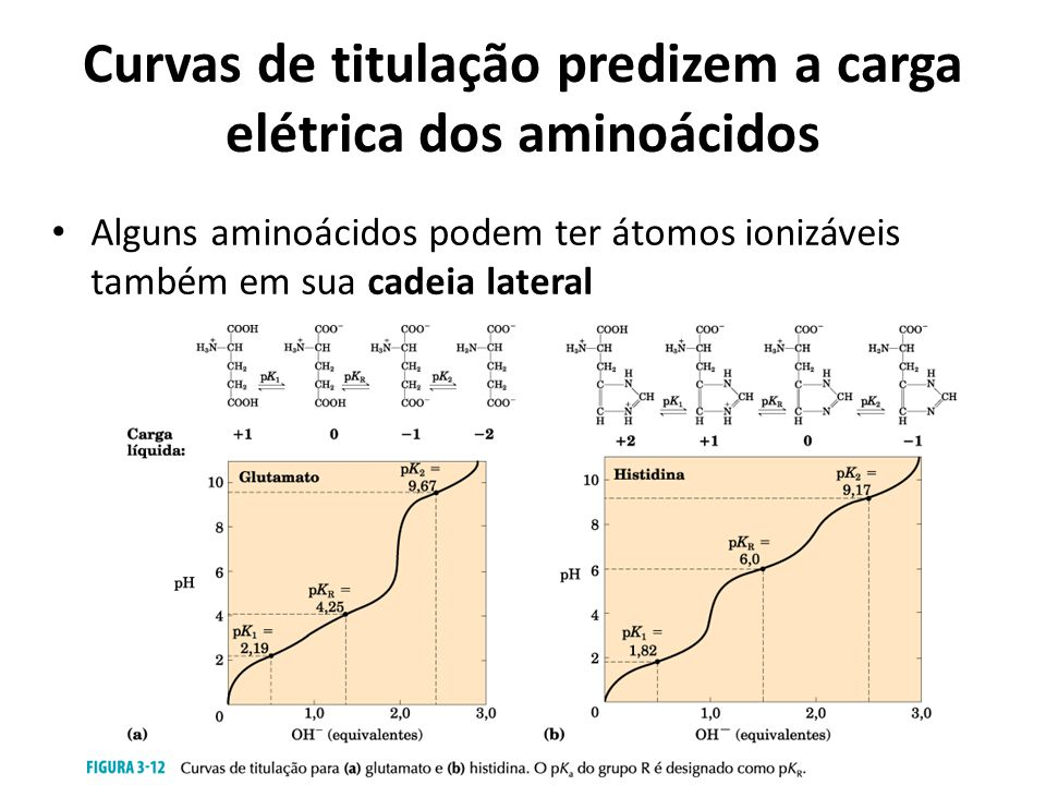 Curvas de titulação predizem a carga elétrica dos aminoácidos Alguns aminoácidos podem ter átomos ionizáveis também em sua cadeia lateral