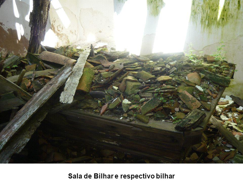 Sala de Bilhar e respectivo bilhar