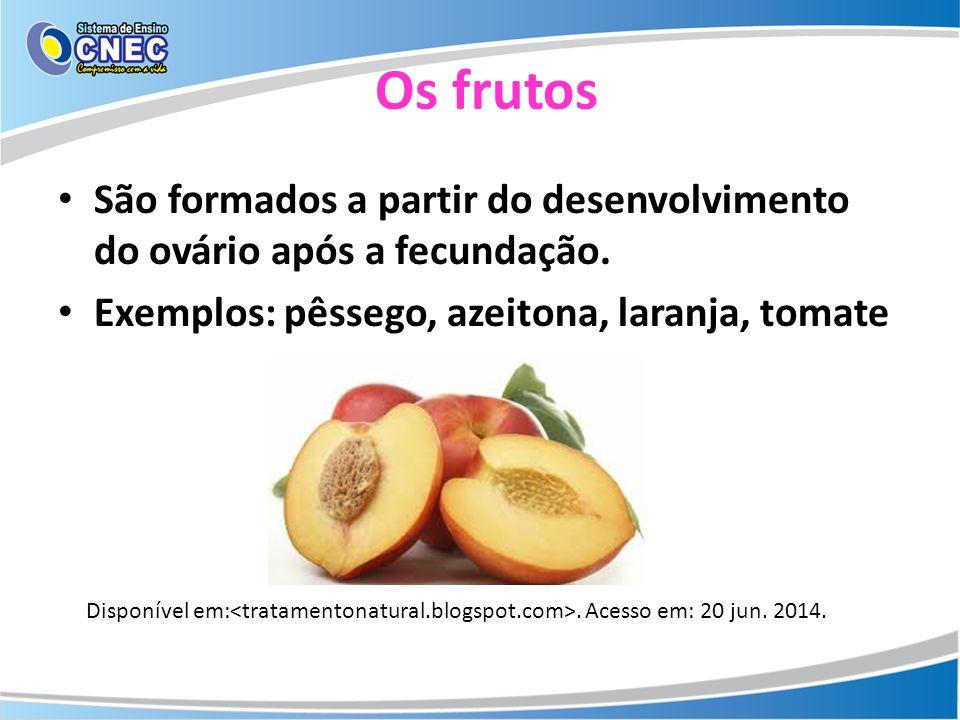 Os frutos São formados a partir do desenvolvimento do ovário após a fecundação. Exemplos: pêssego, azeitona, laranja, tomate Disponível em:. Acesso em