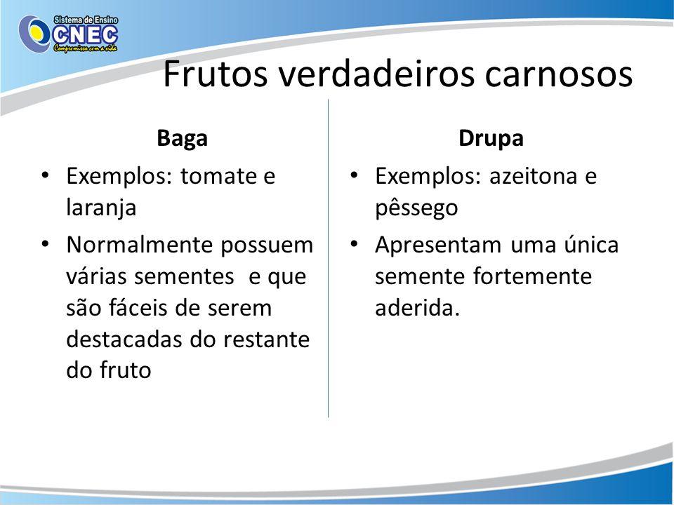 Frutos verdadeiros carnosos Baga Exemplos: tomate e laranja Normalmente possuem várias sementes e que são fáceis de serem destacadas do restante do fr